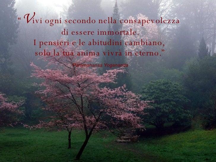 """"""" V ivi ogni secondo nella consapevolezza  di essere immortale. I pensieri e le abitudini cambiano,  solo la tua anima viv..."""