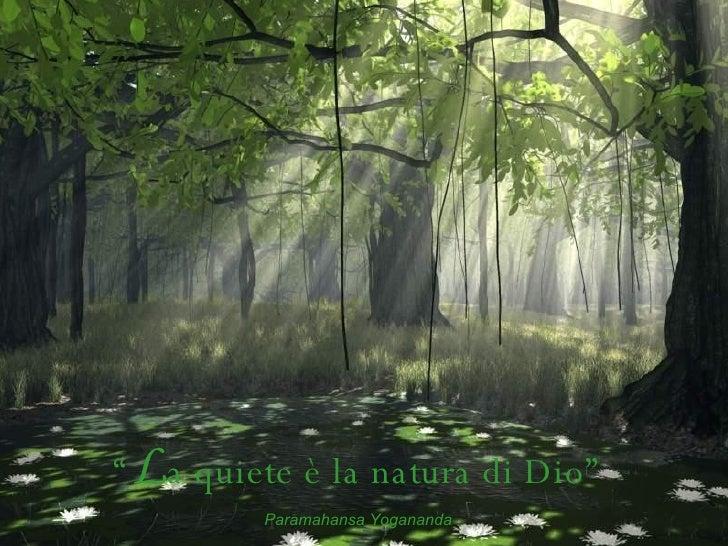 """"""" L a quiete è la natura di Dio"""" Paramahansa Yogananda"""