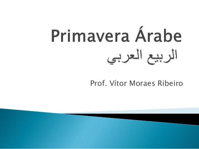 Prof. Vítor Moraes Ribeiro