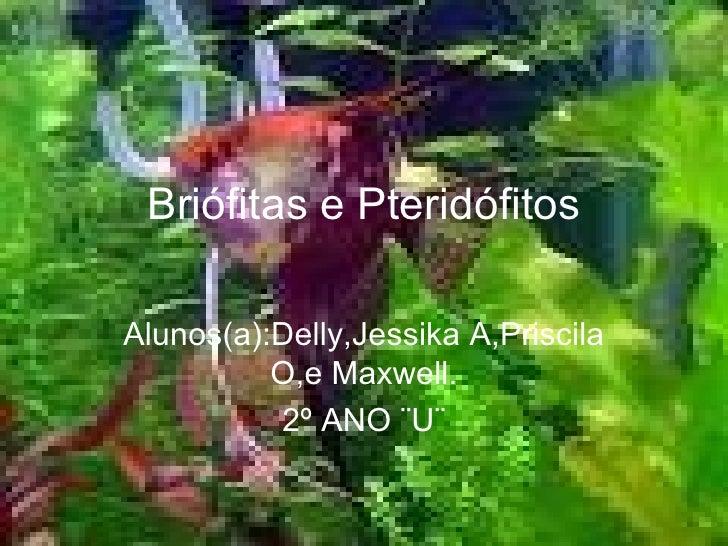 Briófitas e Pteridófitos Alunos(a):Delly,Jessika A,Priscila O,e Maxwell. 2º ANO ¨U¨