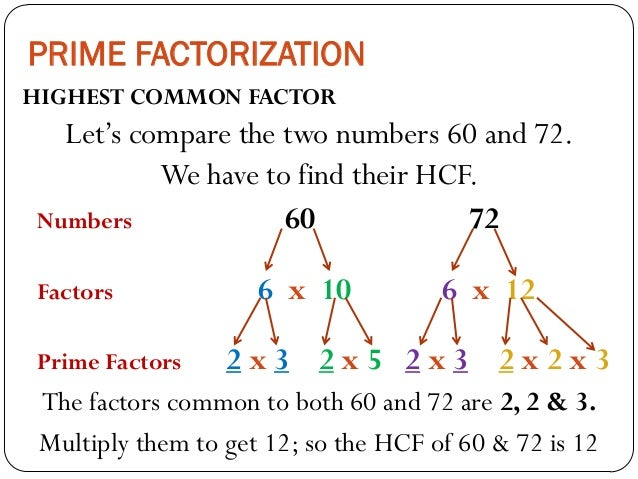 Highest common factor of 28 and 18 dating 7