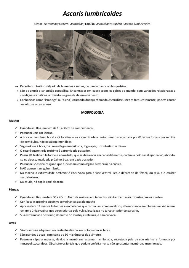 Ascaris lumbricoides Classe: Nematoda; Ordem: Ascaridida; Família: Ascarididae; Espécie: Ascaris lumbricoides  Parasitam ...