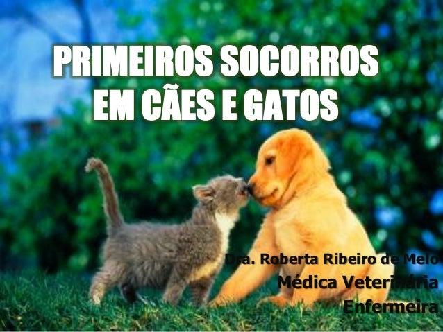 Dra. Roberta Ribeiro de MeloMédica VeterináriaEnfermeira