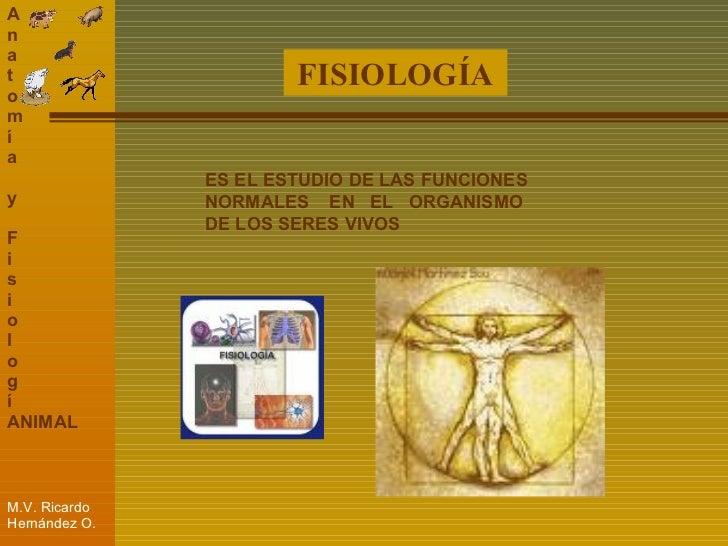 Vistoso Estudio De La Anatomía Y La Fisiología Inspiración ...