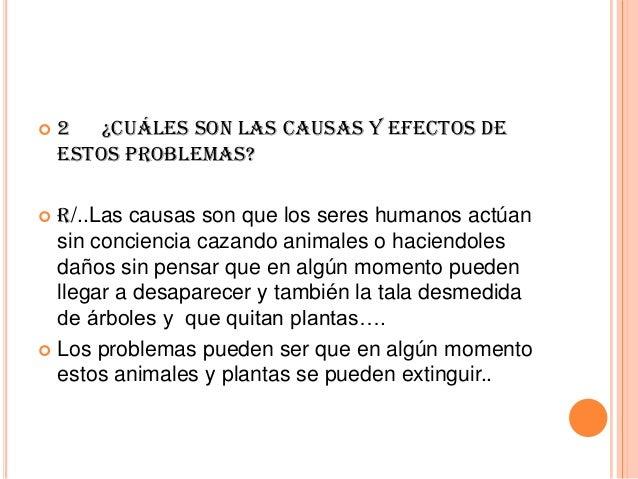   2 ¿Cuáles son las causas y efectos de estos problemas?  R/..Las causas son que los seres humanos actúan sin conciencia ...