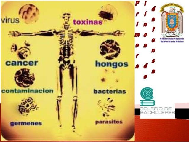  Las defensas del organismo son producto de la coevolución.  A lo largo de la historia evolutiva, los agentes infeccioso...