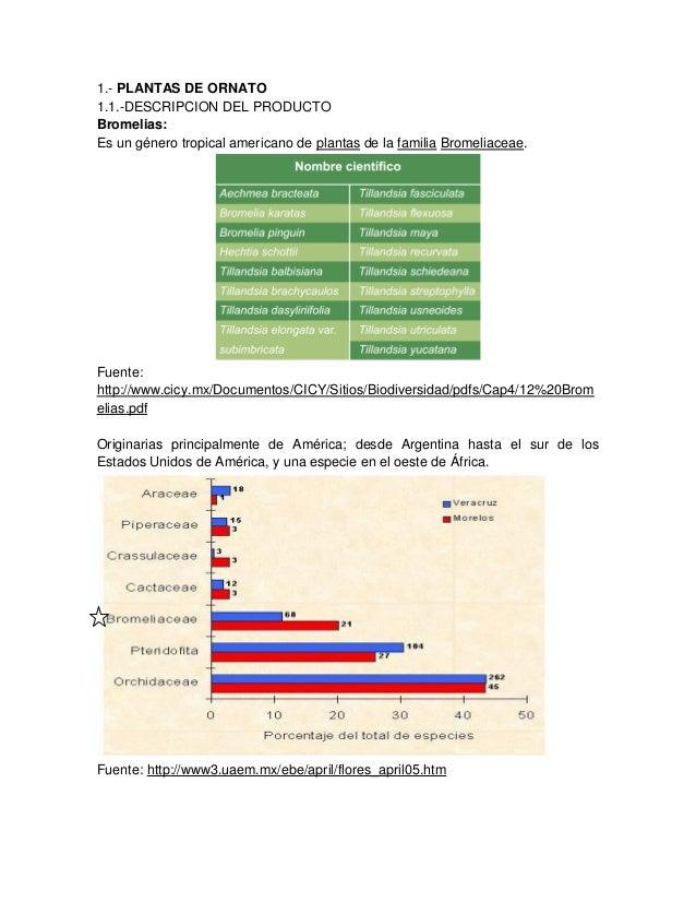 1.- PLANTAS DE ORNATO 1.1.-DESCRIPCION DEL PRODUCTO Bromelias: Es un género tropical americano de plantas de la familia Br...