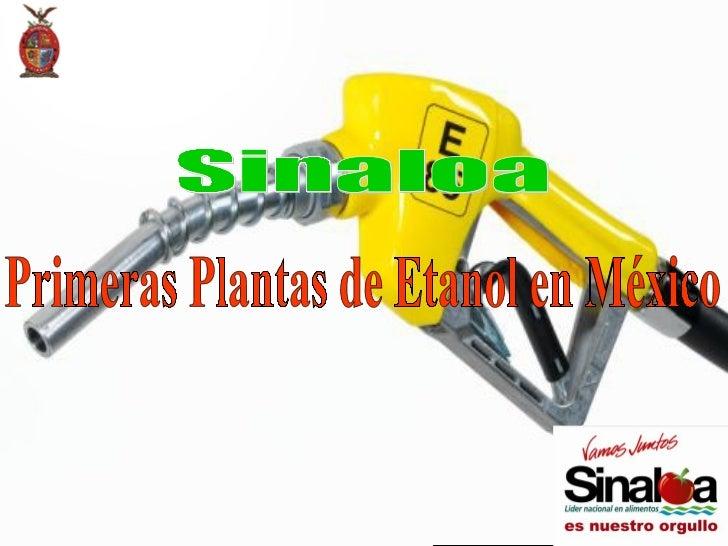 Primeras Plantas de Etanol en México Sinaloa