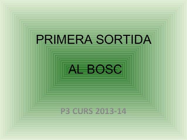 PRIMERA SORTIDA AL BOSC P3 CURS 2013-14