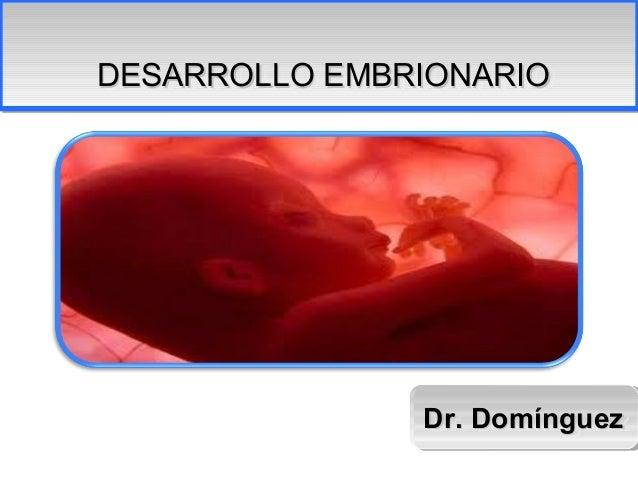 DESARROLLO EMBRIONARIODESARROLLO EMBRIONARIO               Dr. Domínguez               Dr. Domínguez