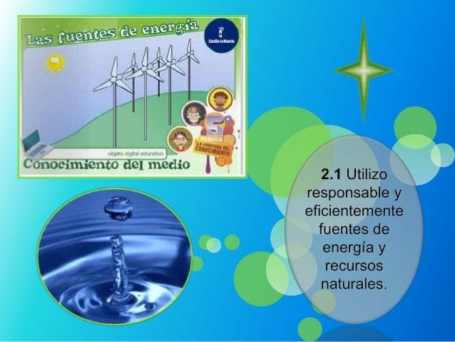 Energía eólica:El viento es una excelentefuente de energía por esohoy en día este seconvierte enelectricidad como losventi...