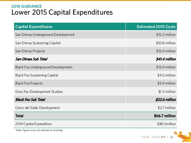 TSX P I NYSE PPP I Lower 2015 Capital Expenditures 2015 GUIDANCE 28 Capital Expenditures Estimated 2015 Costs San Dimas Un...