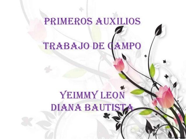 PRIMEROS AUXILIOSTRABAJO DE CAMPOYEIMMY LEONDIANA BAUTISTA