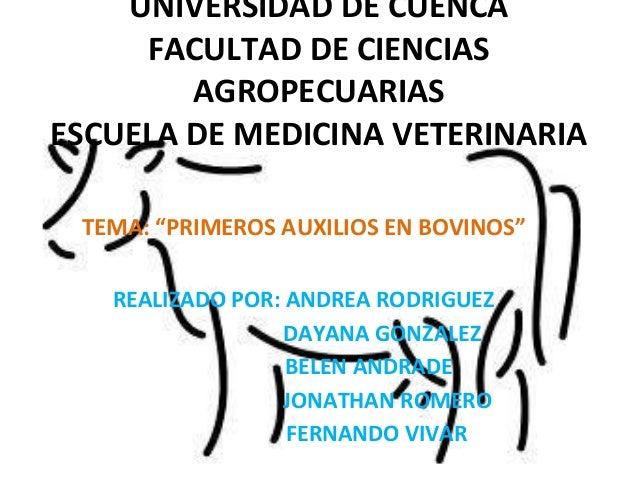 """UNIVERSIDAD DE CUENCA     FACULTAD DE CIENCIAS        AGROPECUARIASESCUELA DE MEDICINA VETERINARIA TEMA: """"PRIMEROS AUXILIO..."""