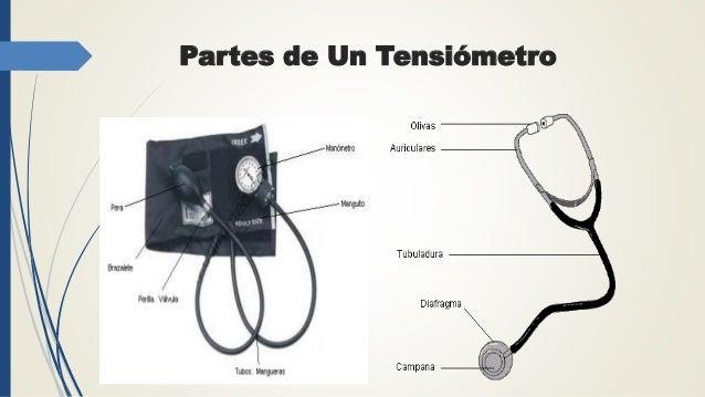 Tensiometro Y Sus Partes Dibujo