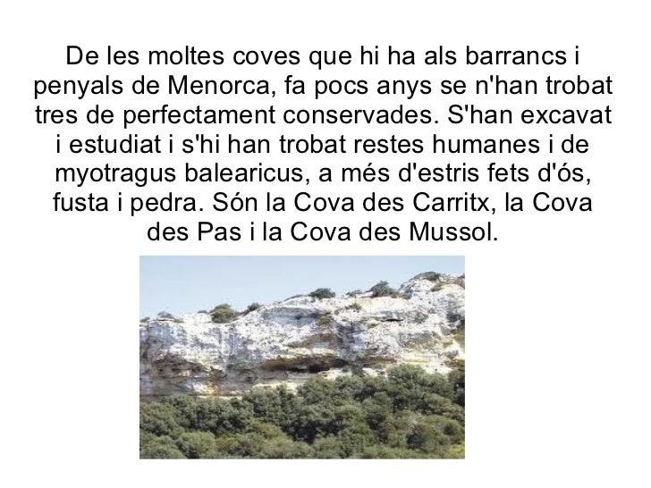 De les moltes coves que hi ha als barrancs i penyals de Menorca, fa pocs anys se n'han trobat tres de perfectament conserv...
