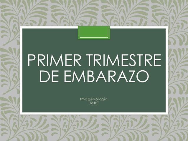 PRIMER TRIMESTRE DE EMBARAZO Imagenología UABC