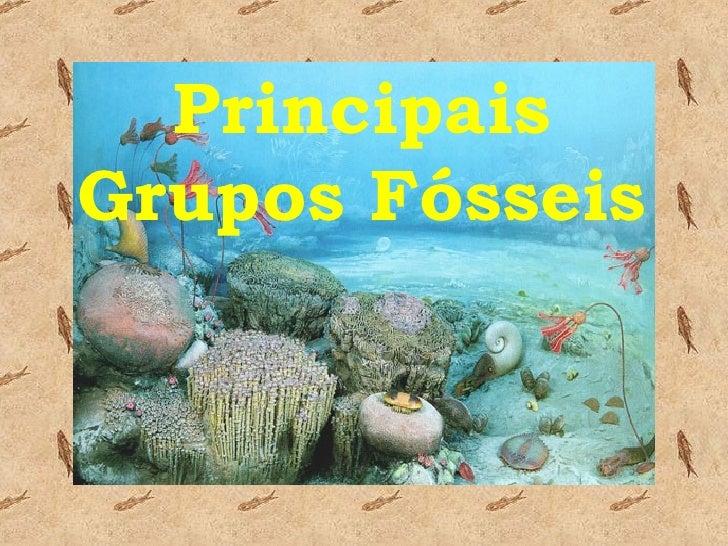 Principais Grupos Fósseis