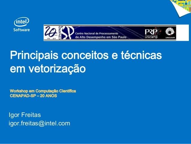 Principais conceitos e técnicas em vetorização Workshop em Computação Científica CENAPAD-SP – 20 ANOS Igor Freitas igor.fr...