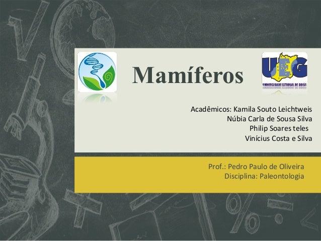 Mamíferos  Acadêmicos: Kamila Souto Leichtweis  Núbia Carla de Sousa Silva  Philip Soares teles  Vinícius Costa e Silva  P...