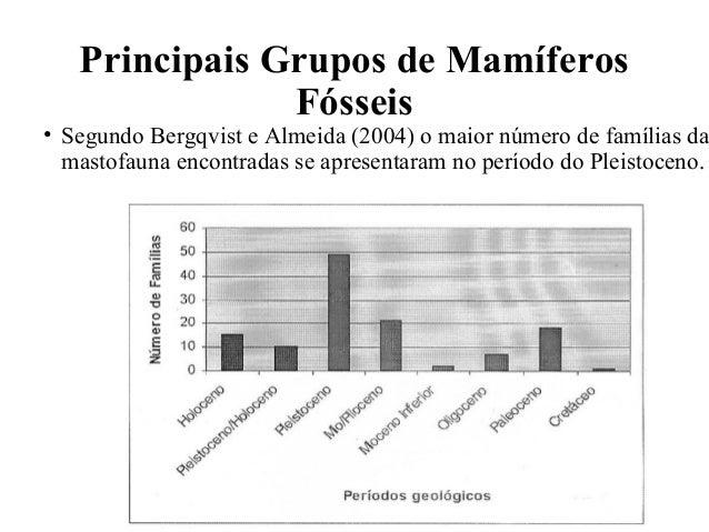 Principais Grupos de Mamíferos  Fósseis  • Segundo Bergqvist e Almeida (2004) o maior número de famílias da  mastofauna en...