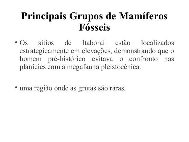 Principais Grupos de Mamíferos  Fósseis  • Os sítios de Itaboraí estão localizados  estrategicamente em elevações, demonst...