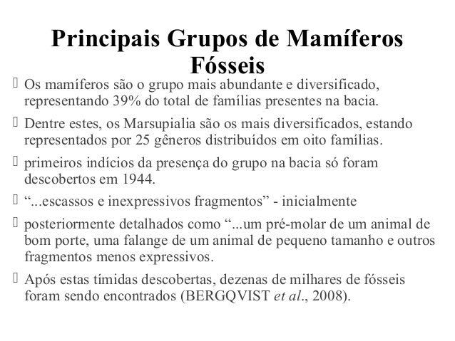 Principais Grupos de Mamíferos  Fósseis   Os mamíferos são o grupo mais abundante e diversificado,  representando 39% do ...