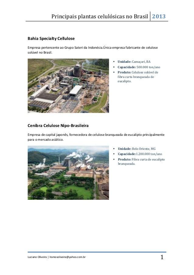 Principais plantas celulósicas no Brasil 2013Luciano Oliveira | lramosoliveira@yahoo.com.br 1Bahia Specialty CelluloseEmpr...