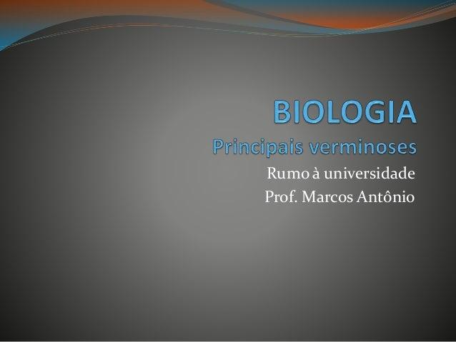Rumo à universidade Prof. Marcos Antônio