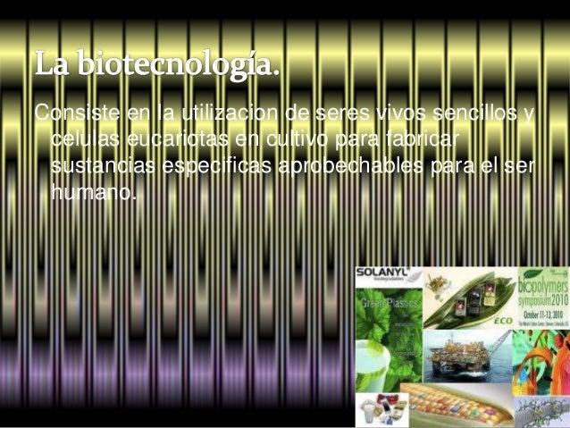 Principales aportaciones de la biotecnológia Slide 3