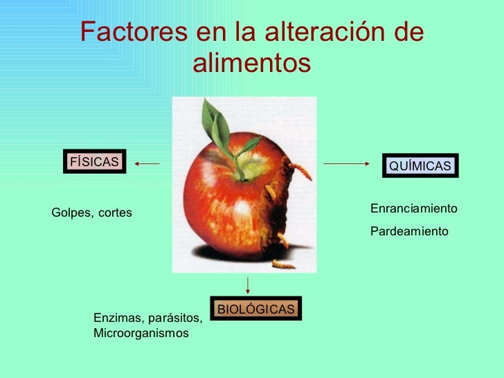 Principales causas de deterioro de los alimentos for Quimica de los alimentos pdf
