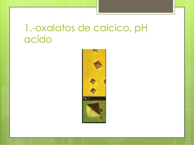 el queso afecta el acido urico dieta para gota o acido urico la cebolla hace mal para el acido urico