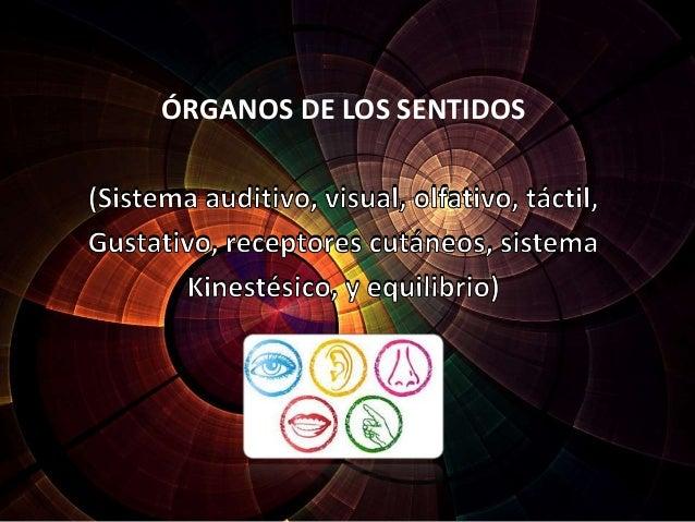 (Sistema auditivo, visual, olfativo, táctil, Gustativo, receptores cutáneos, sistema Kinestésico, y equilibrio) ÓRGANOS DE...