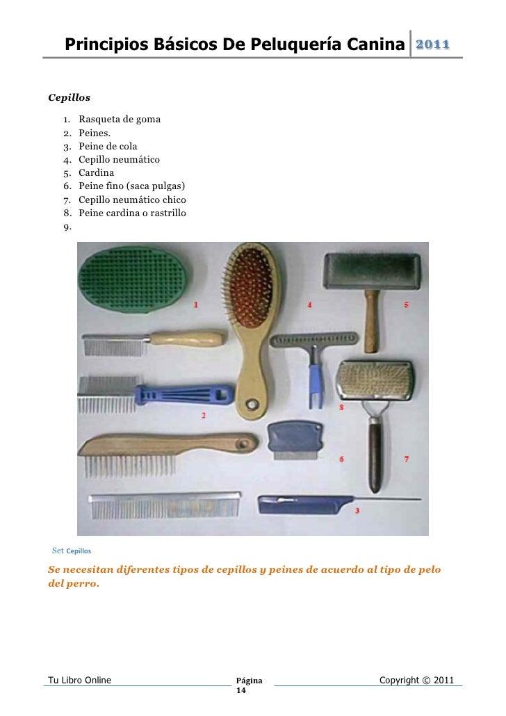 Con rastrillo y cepillo - 1 7