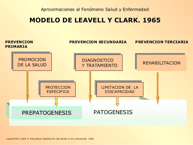 MODELO DE LEAVELL Y CLARK. 1965 Leavell HR y Clark F: Preventive medicine for the doctor in his community. 1965. PROMOCION...