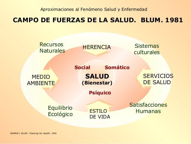 SALUDSALUD (Bienestar) ESTILO DE VIDA HERENCIA MEDIO AMBIENTE SERVICIOS DE SALUD Equilibrio Ecológico Recursos Naturales S...