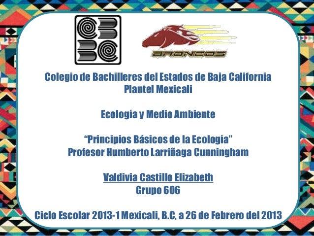 Colegio de Bachilleres del Estados de Baja California                    Plantel Mexicali                Ecología y Medio ...