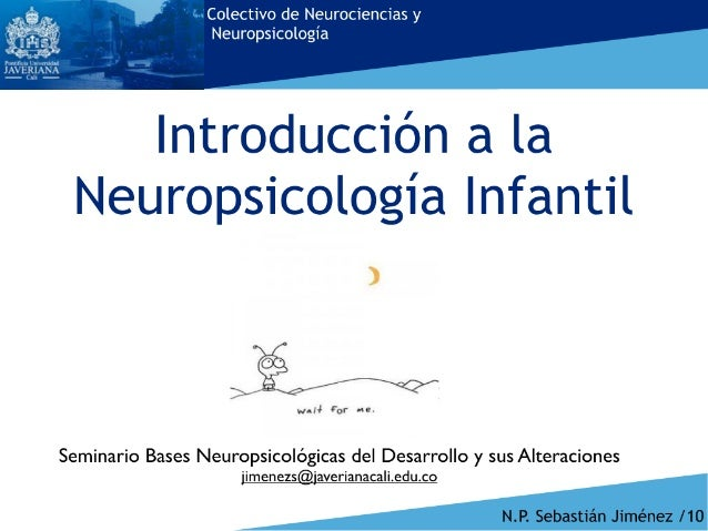 Principios básicos neuropsicología infantil
