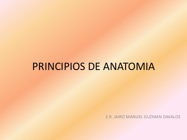 PRINCIPIOS DE ANATOMIA<br />E.R. JAIRO MANUEL GUZMAN DAVALOS<br />