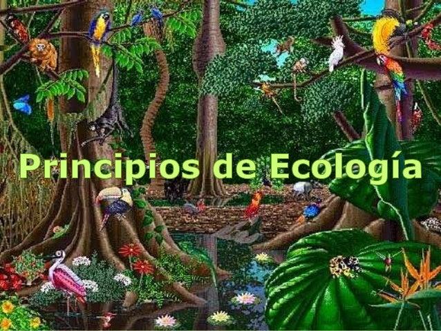 BIOSFERA La biósfera, (del griego bios = vida,  sphaira, esfera). Es la capa del planeta  Tierra en donde se desarrolla l...