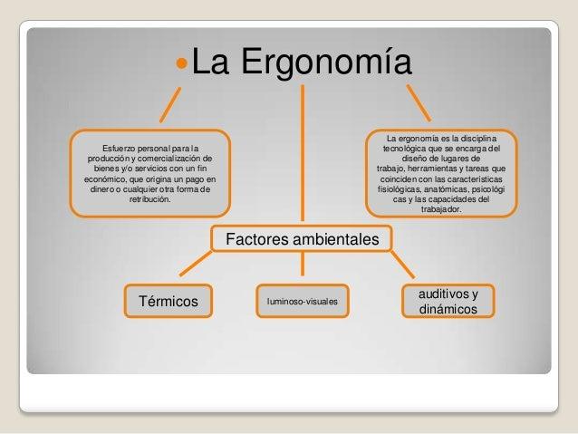 Principios de la ergonom a for Caracteristicas de la ergonomia