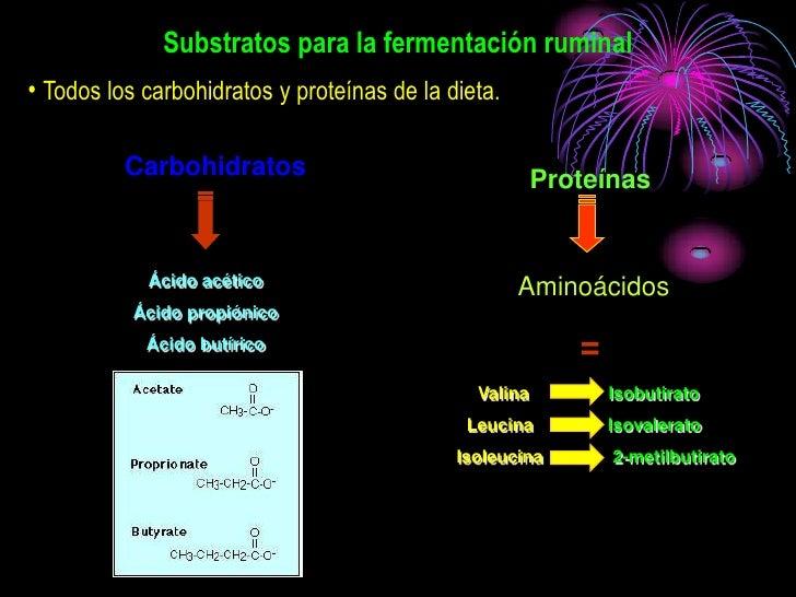 Substratos para la fermentación ruminal • Todos los carbohidratos y proteínas de la dieta.            Carbohidratos       ...