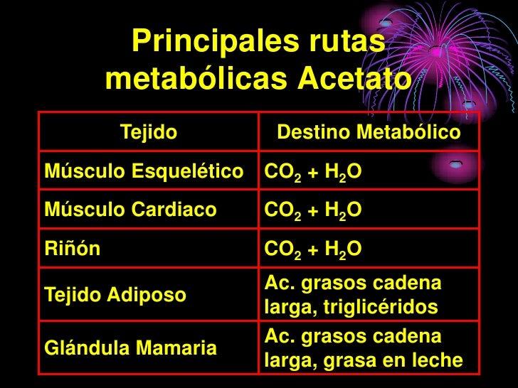 Principales rutas         metabólicas Acetato         Tejido       Destino Metabólico Músculo Esquelético CO2 + H2O Múscul...