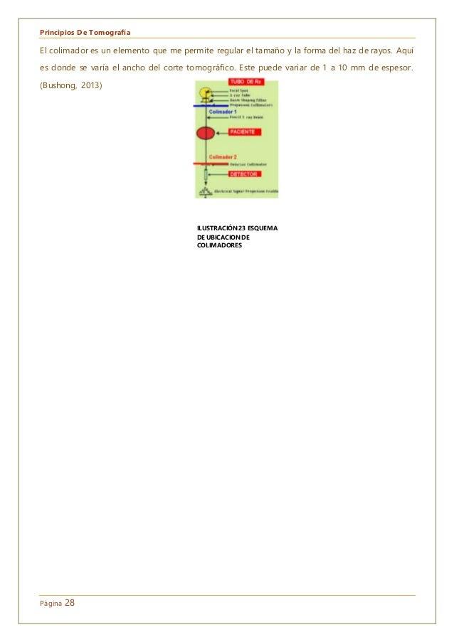 Principios De Tomografía Página 28 El colimador es un elemento que me permite regular el tamaño y la forma del haz de rayo...