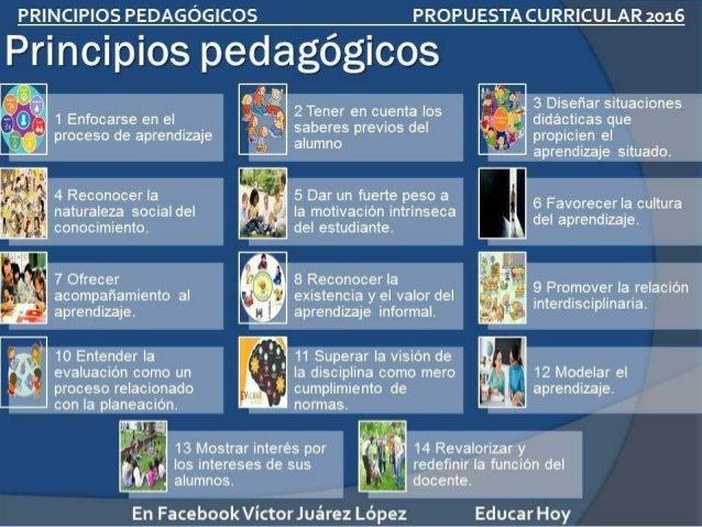 Principios Pedagógicos que sustentan el curriculo 2017