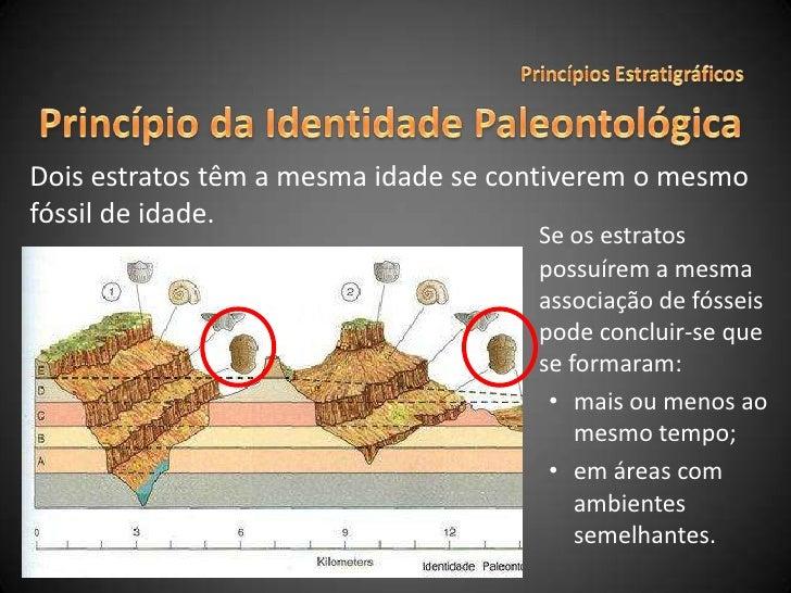 Princípios Estratigráficos<br />Princípio da Identidade Paleontológica<br />Dois estratos têm a mesma idade se contiverem ...
