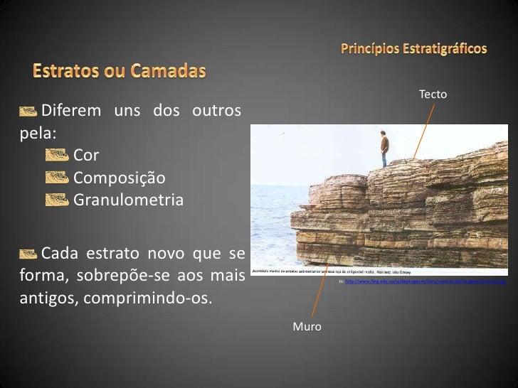 Princípios Estratigráficos<br />Estratos ou Camadas<br />Tecto<br />Diferem uns dos outros  pela:<br />Cor<br /> Composiçã...