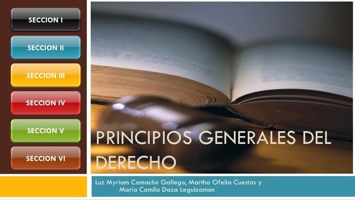 SECCION ISECCION IISECCION IIISECCION IV              PRINCIPIOS GENERALES DELSECCION VSECCION VI              DERECHO    ...