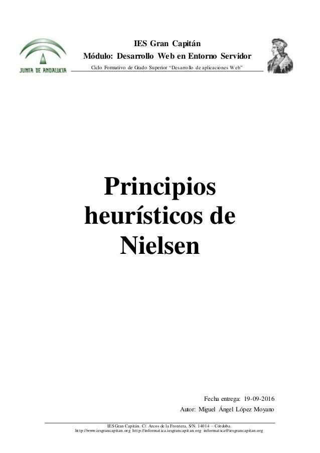 Principios Heurísticos De Nielsen Trabajo