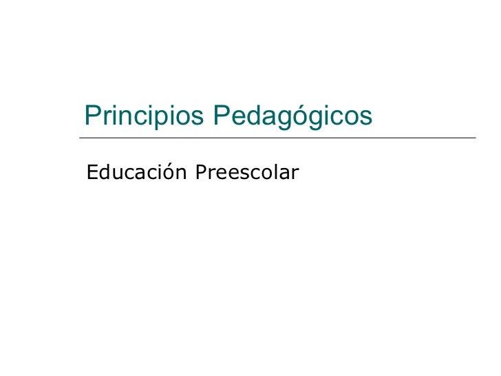 Principios Pedagógicos Educación Preescolar